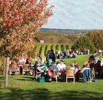 Balducci Vineyards $50 Gift Certificate